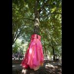 ILLUSION Dresses